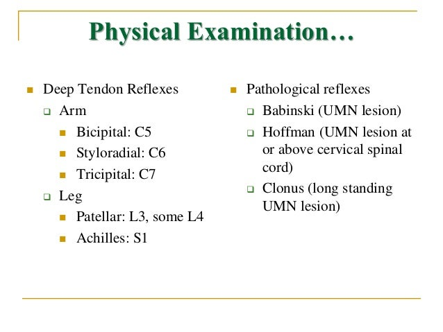 back physical exam documentation