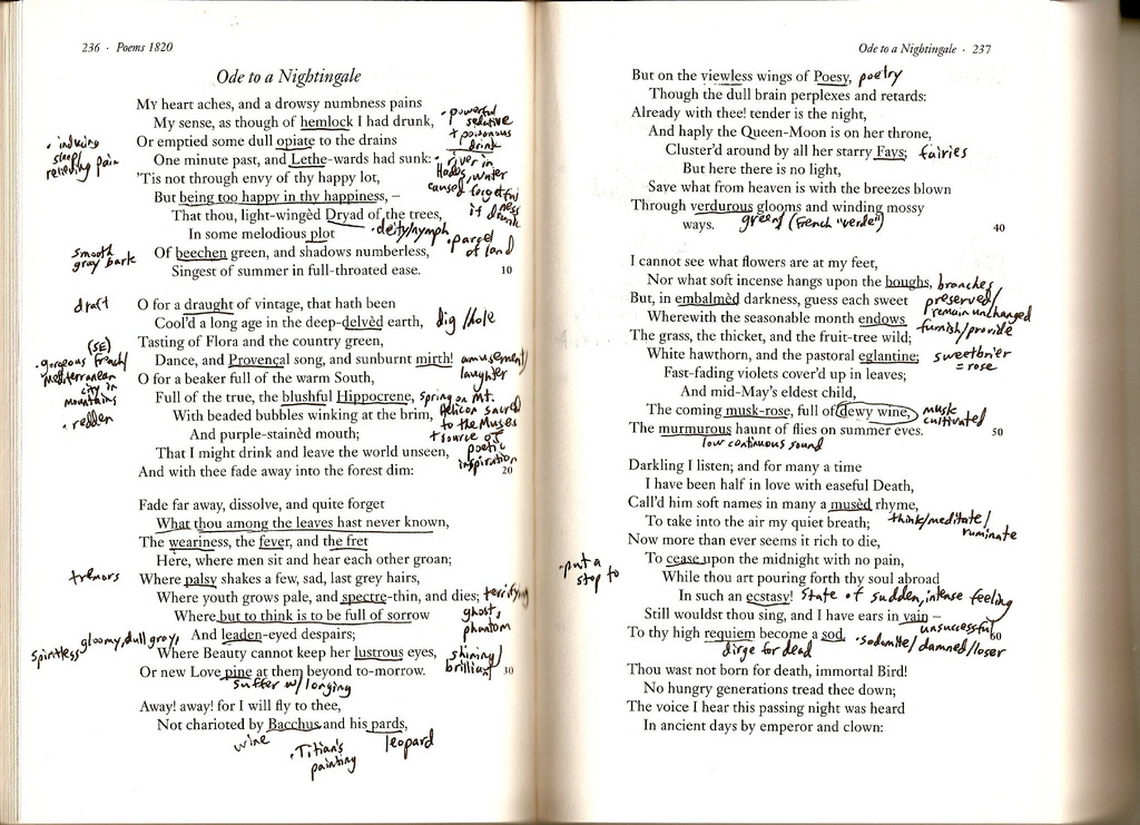 how to annotate pages document