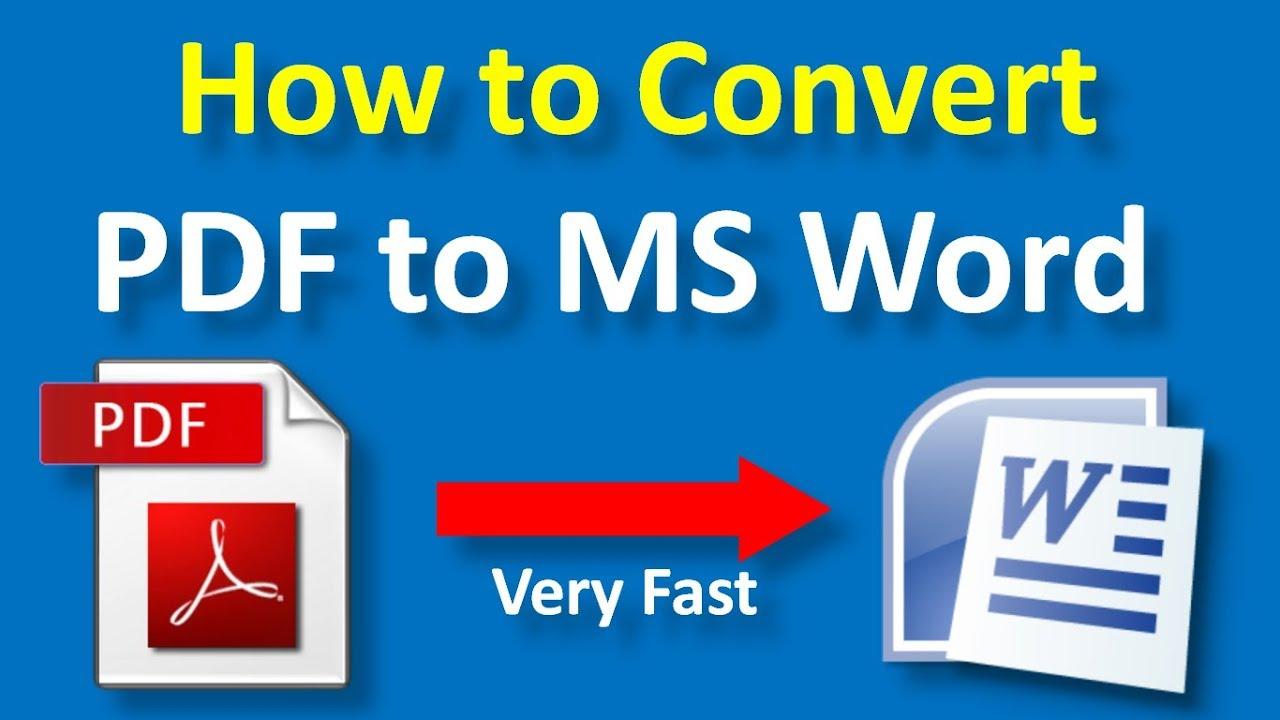 copy pdf into word document