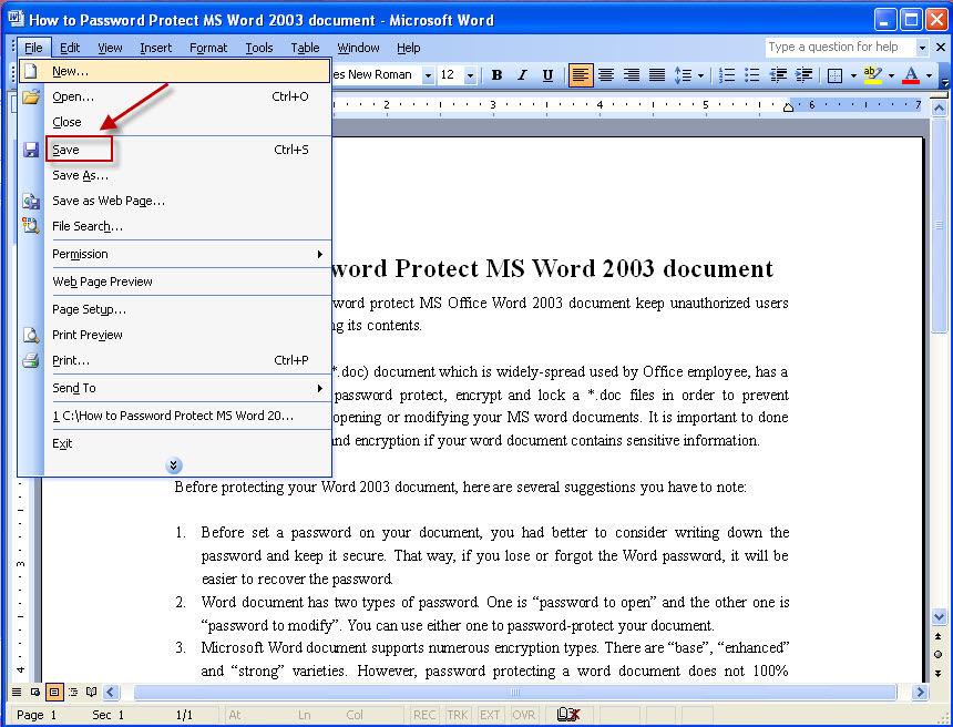 password protect word document 2010