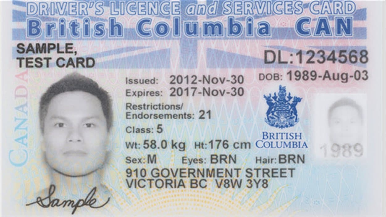 id document number on drivers license au