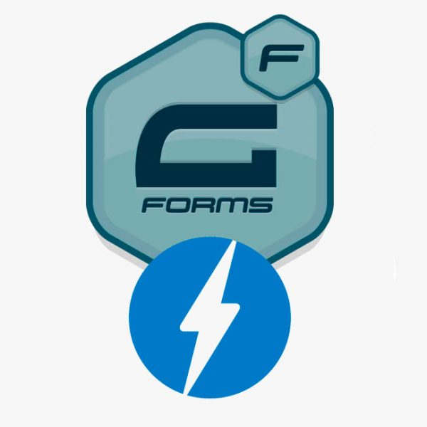 gravity forms plugin documentation