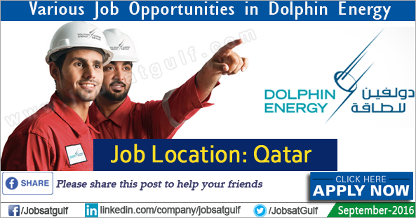 latest document controller jobs in qatar