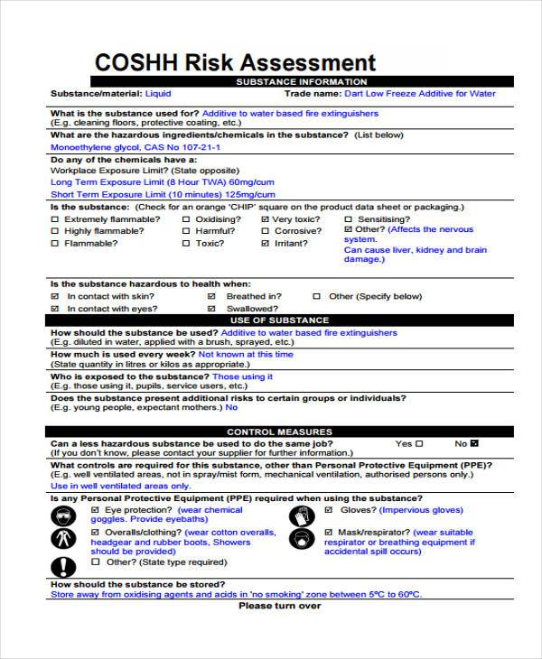 free risk assessment template word document