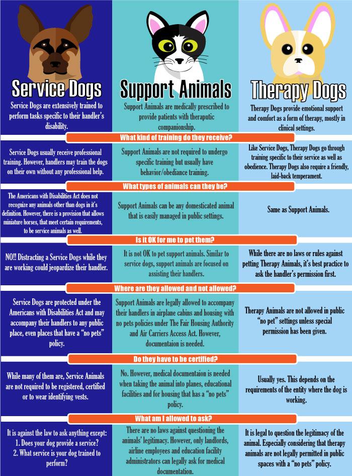 service dog documentation requirements