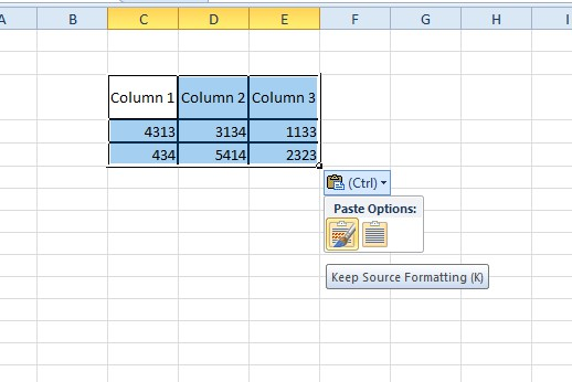 convert excel to word document