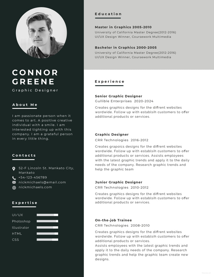 free resume formats in word document
