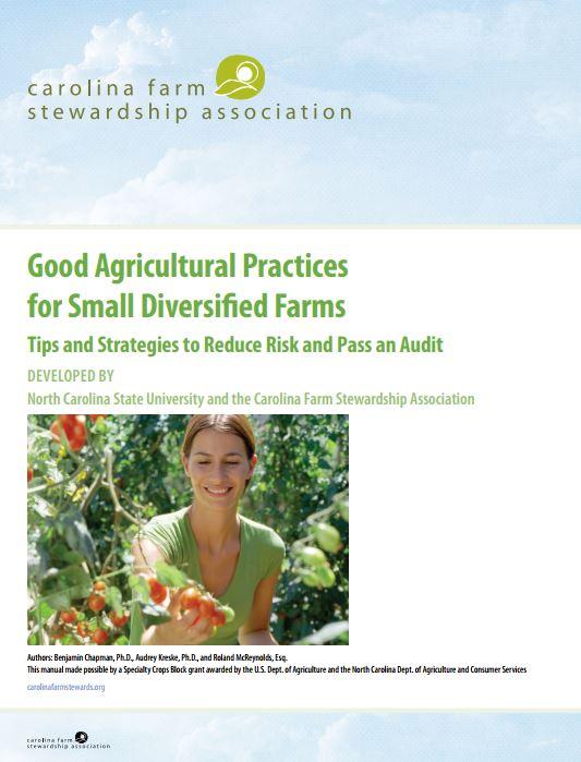 good documentation practices pdf