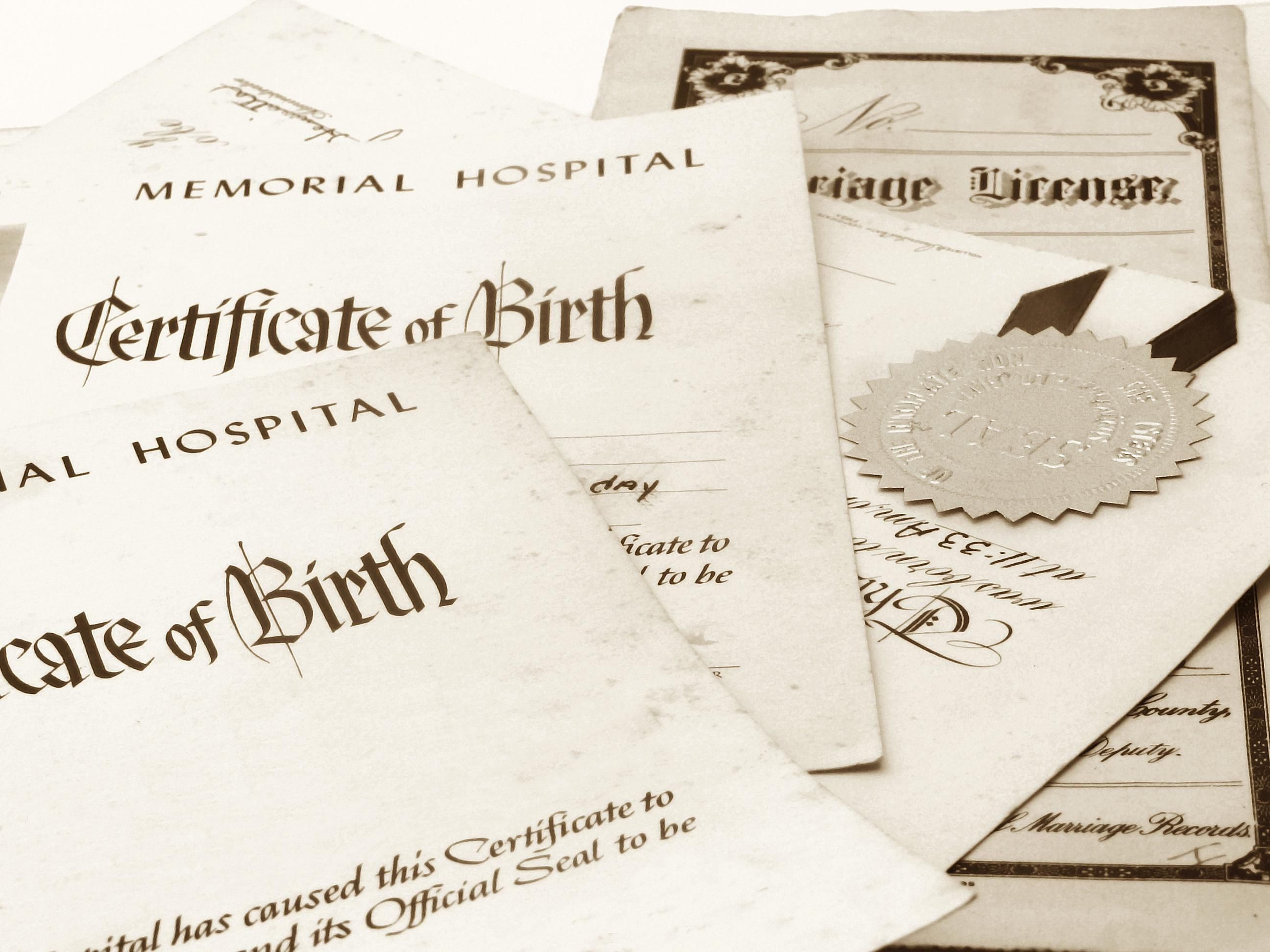 how to document pregnancies and births