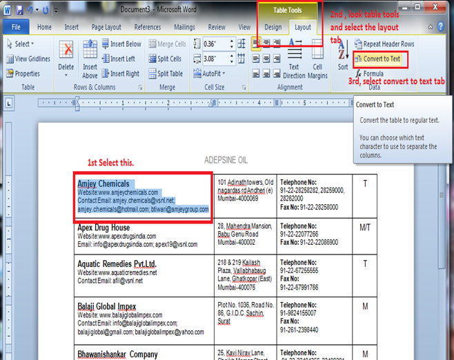 convert excel file to word document
