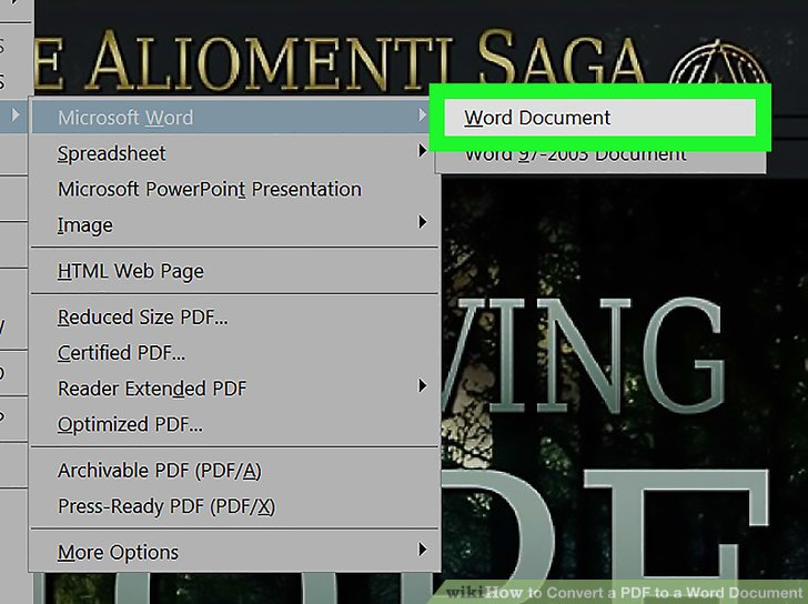 convert pdf to editable word document