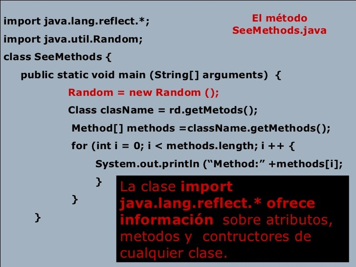 java.lang.reflect documentation