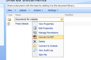 document conversion services sharepoint 2010