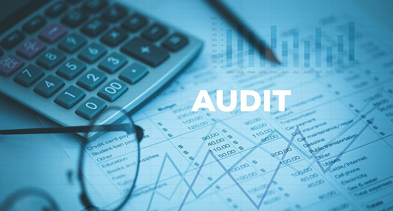 what documentation do internal auditors use