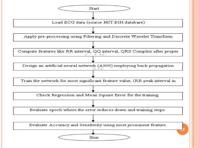 discrete wavelet transform documentation for matlab