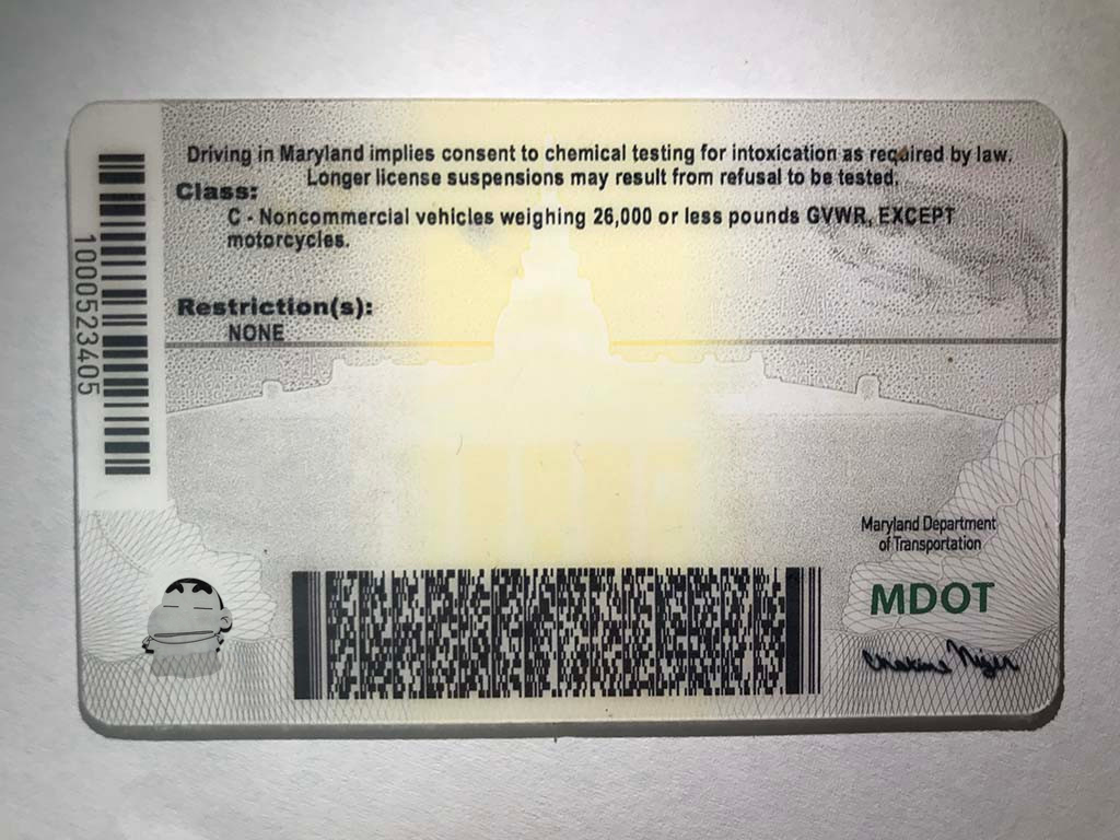 document number nys drivers license