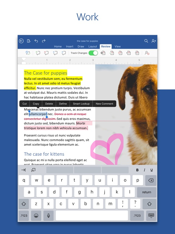 edit word document on ipad