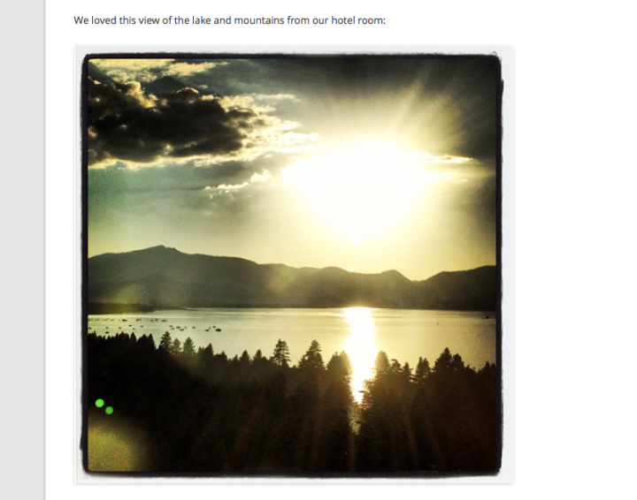 embed instagram video in word document