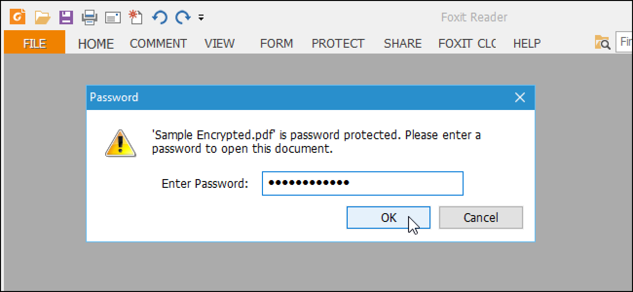 how to password a pdf document