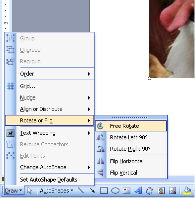 how to rotate a picture in a microsoft work document