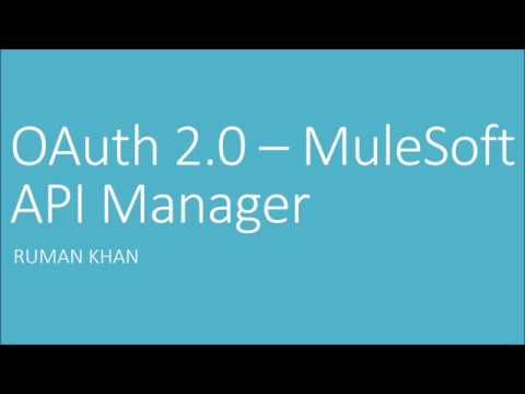 mulesoft api manager documentation
