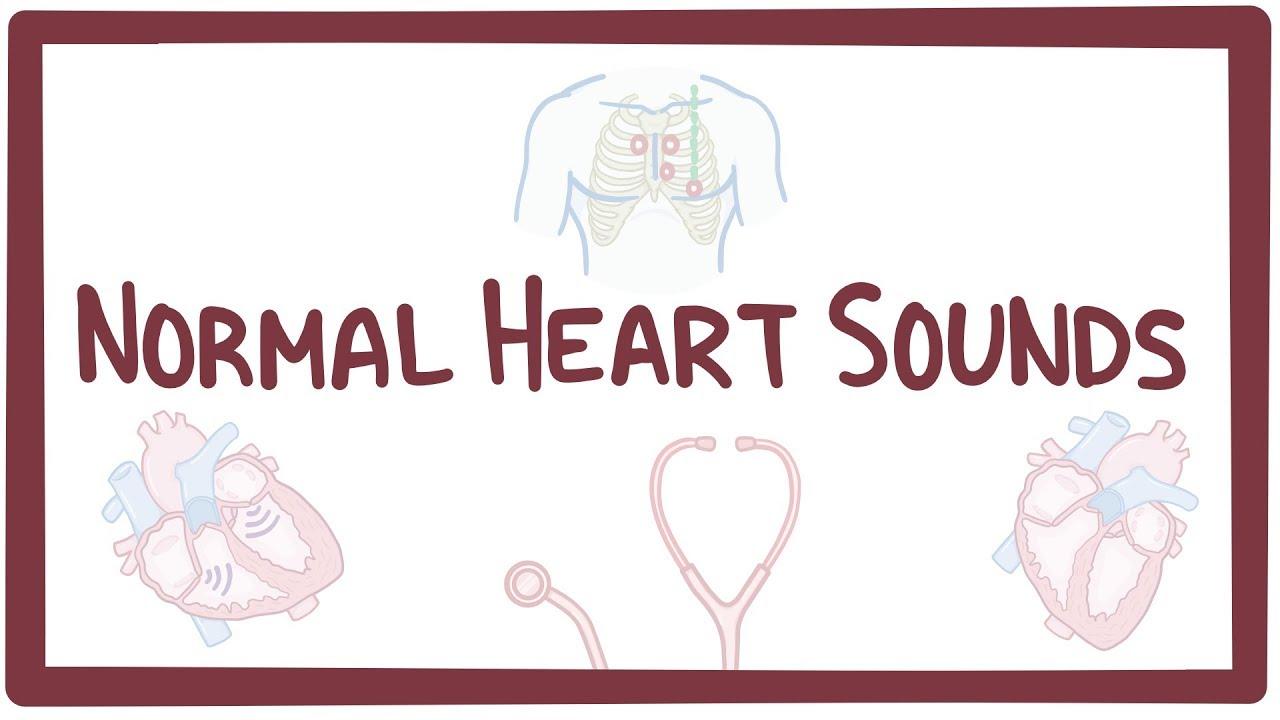 normal heart sounds documentation