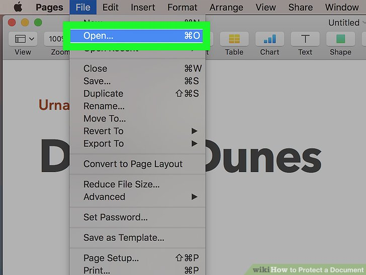 password protect word document on mac