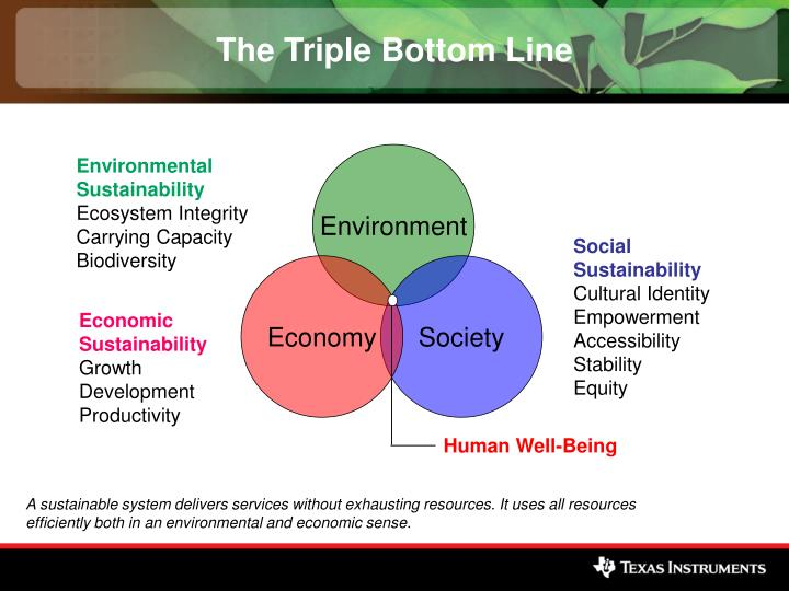 sustainability strategy document triple bottom principle