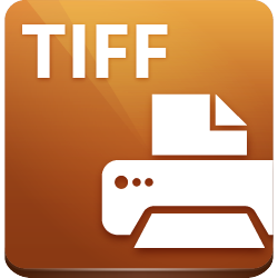 what is a tiff document